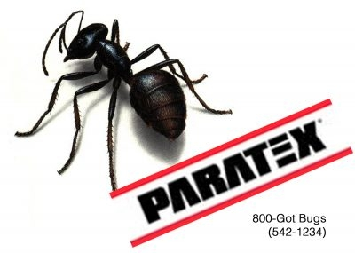 Paratex Pest Control, fumigation, insect and rodent control since 1908 throughout district